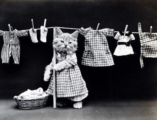 A mosás a háztartás legegyszerűbb feladata….vagy még sem?
