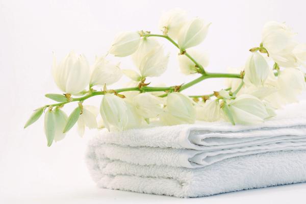 Mi a rend és a tisztaság közötti különbség?